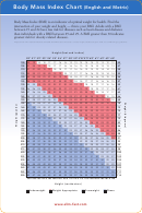 Body Mass Index Chart (english And Metric)