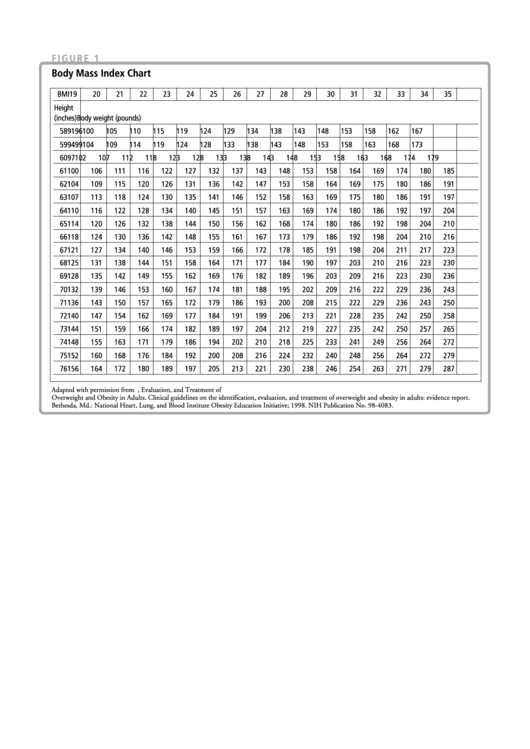 Body Mass Index Chart Printable pdf