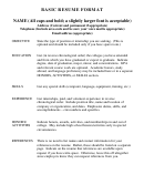Basic Resume Format