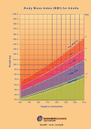 Body Mass Index (bmi) For Adults