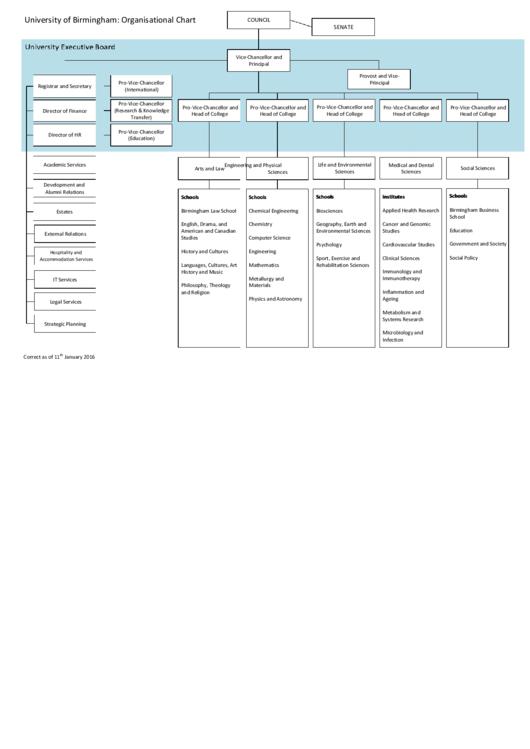 University Of Birmingham: Organisational Chart
