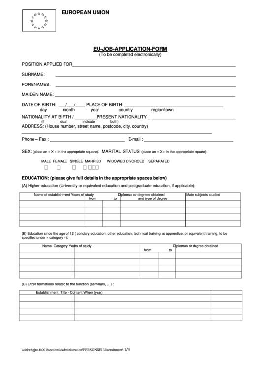 European Union Eu Job Application Form Printable pdf