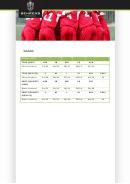 Behrens Sportswear Size Guide