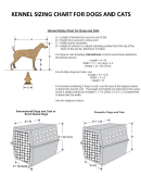 Kennel Sizing Chart For Dogs And Cats