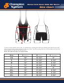Champion System Donna Forte Razor Bella Bib Shorts Size Chart